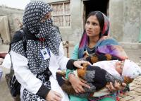 A growing need for midwives in Pakistan